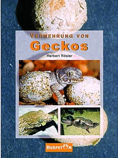 vermehrung von geckos echsen b cher herpeton verlag. Black Bedroom Furniture Sets. Home Design Ideas
