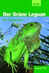 DVD - Der Grüne Leguan im Terrarium