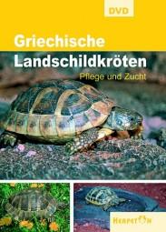 DVD - Griechische Landschildkröten