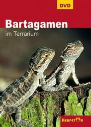 DVD - Bartagamen im Terrarium